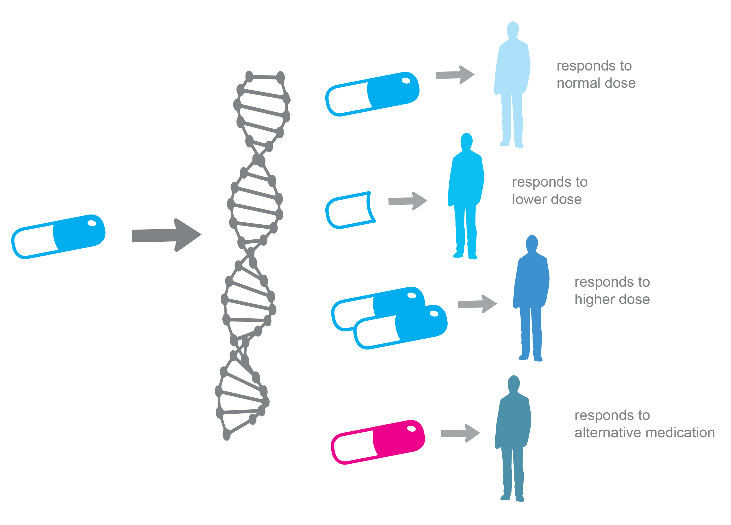 Personalized Medicine and the Practice of Medicine in the 21st Century